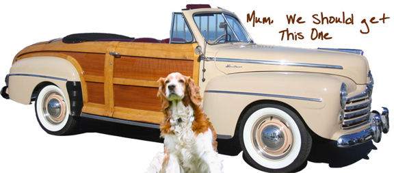Winslow posing with a Woody Convertible